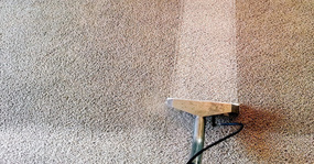 Professional Carpet Cleaning Highworth