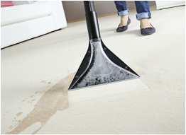 Profesional Carpet Cleaning Swindon Equipment